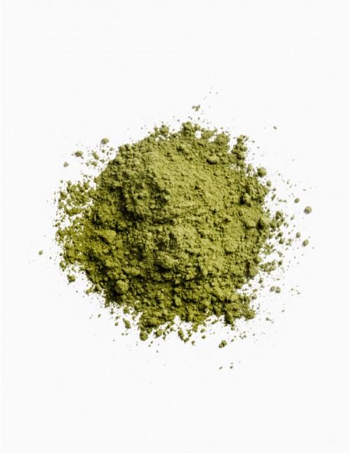 Thé matcha naturel en poudre
